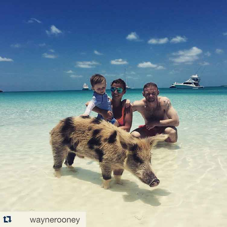 Rooney Shared This Picture With His Family On Pig Island Instagram Coleen Posted Her